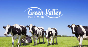affordable milk auckland